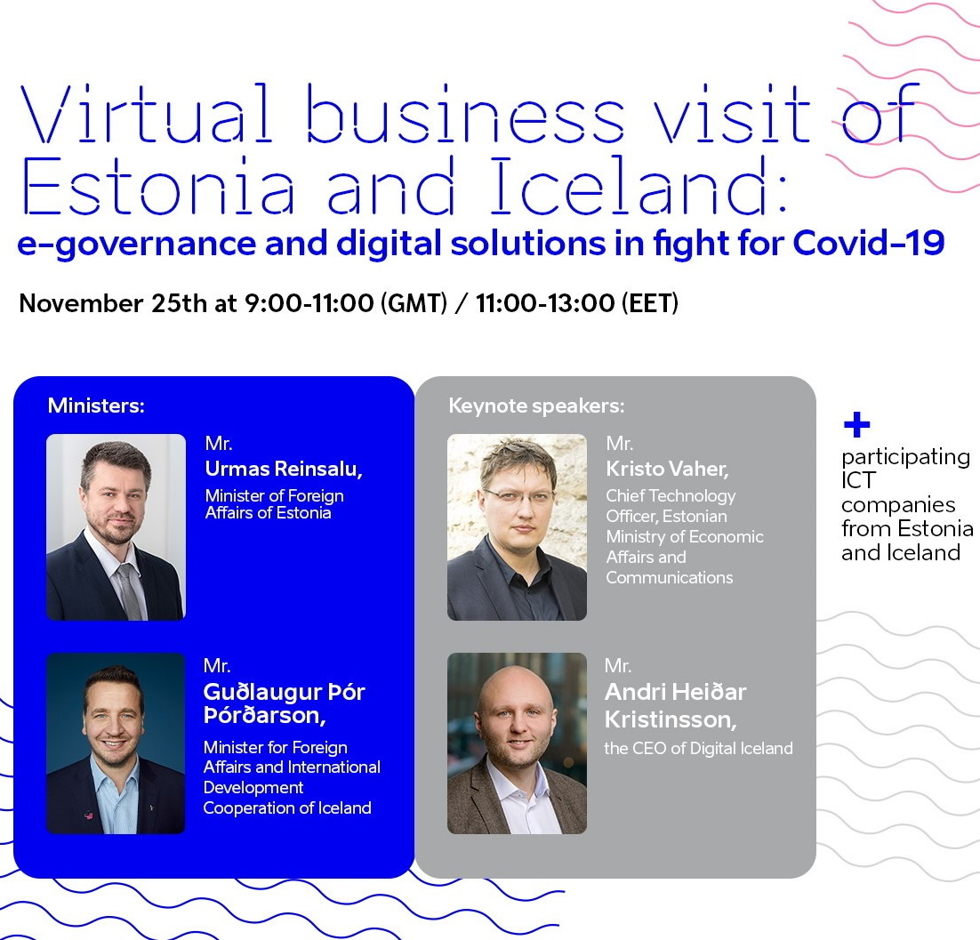 Virtual Business Visit between Estonia and Iceland